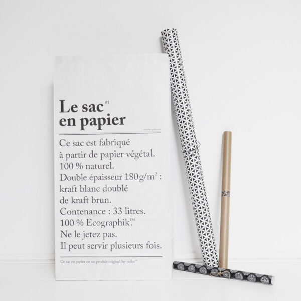 the paper bag/le sac en papier