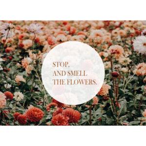 Huis van Mijn kaart Smell the flowers Villa Madelief